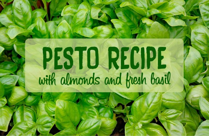 Almond basil pesto recipe - Optiderma