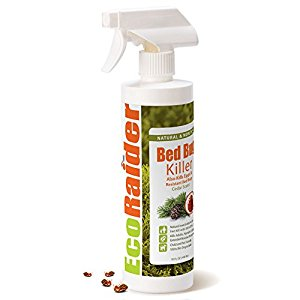EcoRaider Bed Bug Killer Spray
