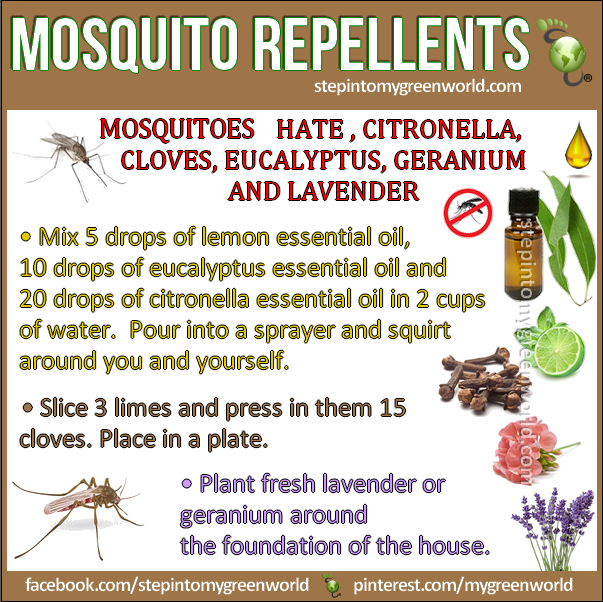 how to avoid mosquitoes naturally