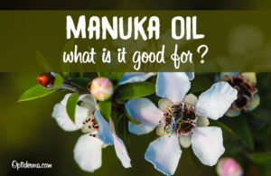 The Benefits of Manuka Oil