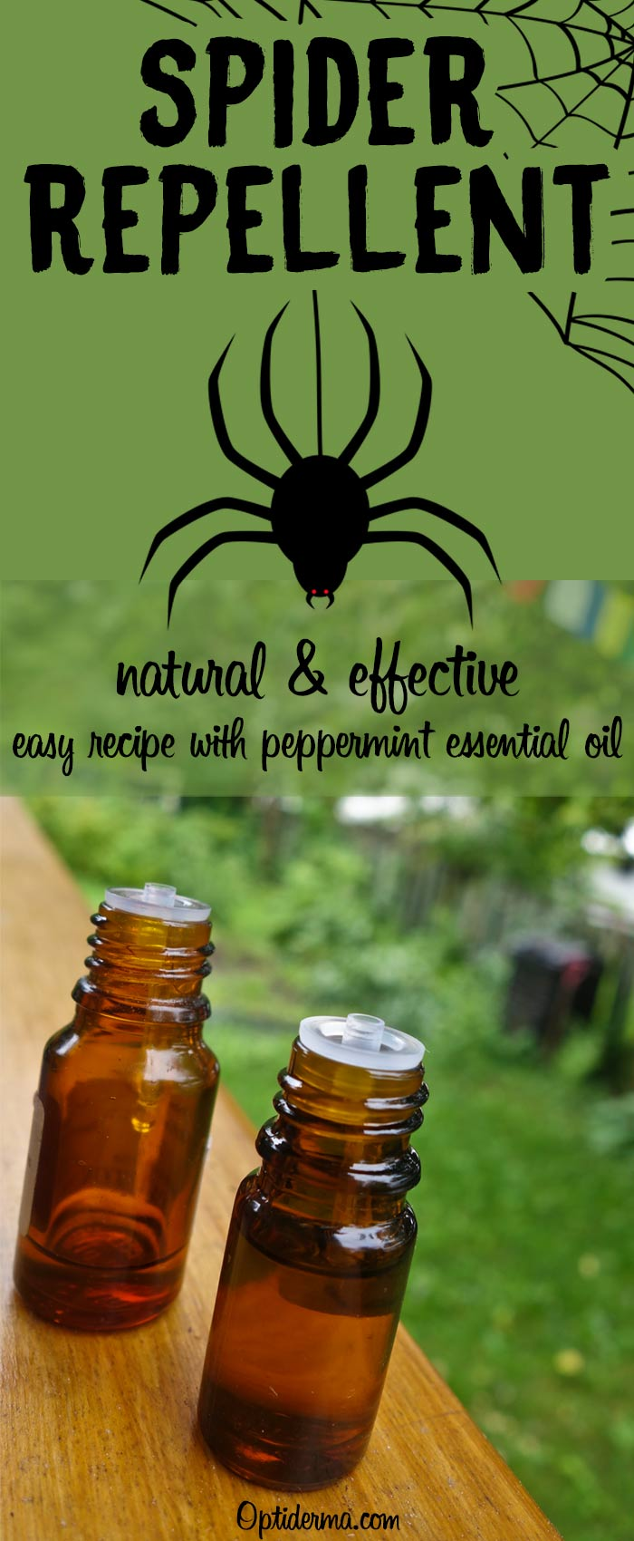 Natural Spider Repellent with Peppermint Essential Oil