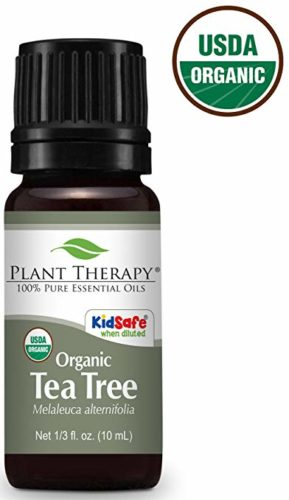 Tea Tree Oil For Fleas How To Use Tea Tree To Repel Fleas