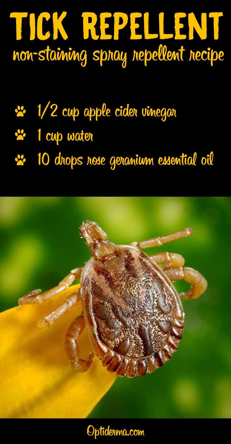 Natural Tick Repellent Recipe