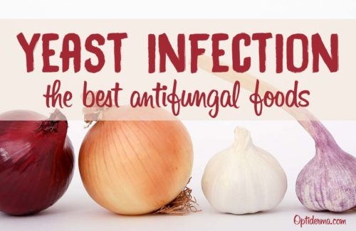 Best Antifungal Foods- Candida Yeast Infection