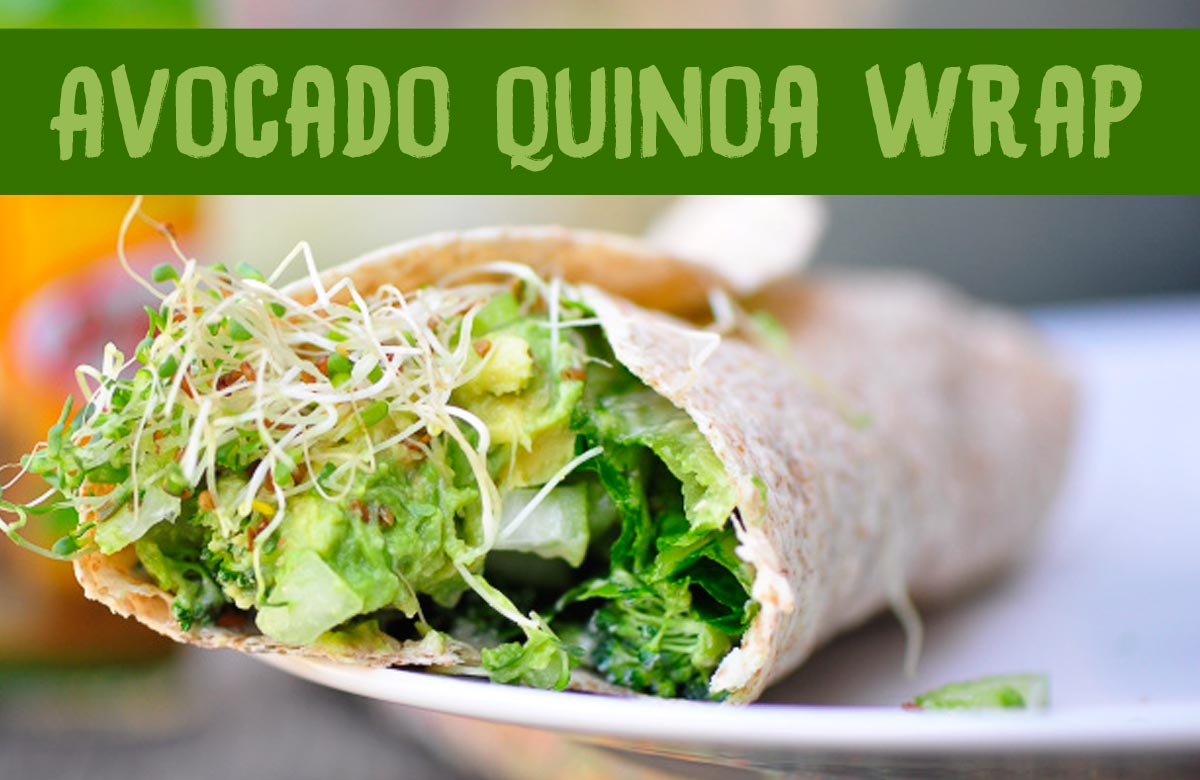 Healthy Vegan Quinoa Wrap with Avocado and Alfalfa Sprouts