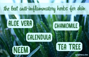 anti-inflammatory herbs for skin