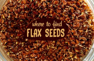 where to find flax seeds