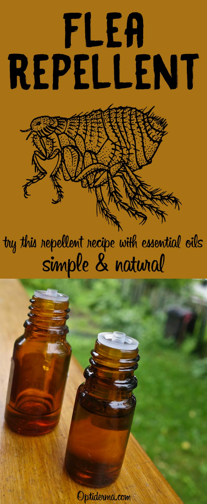 Natural Flea Repellent with Essential Oils
