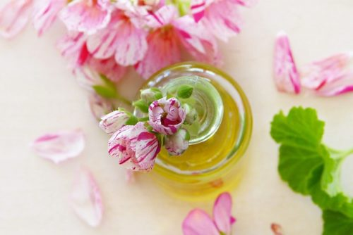 Geranium Essential Oil Skin Rashes