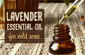 Lavender essential oil for cold sores