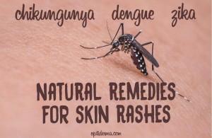 skin rashes caused by zika, chikungunya, dengue