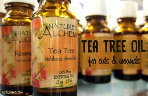 Tea tree oil for wounds & cuts