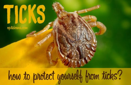how to use rose geranium essential oil for ticks